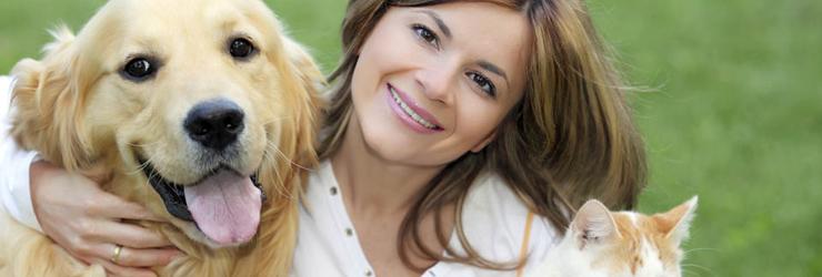 Dog Kennels Birmingham Mi